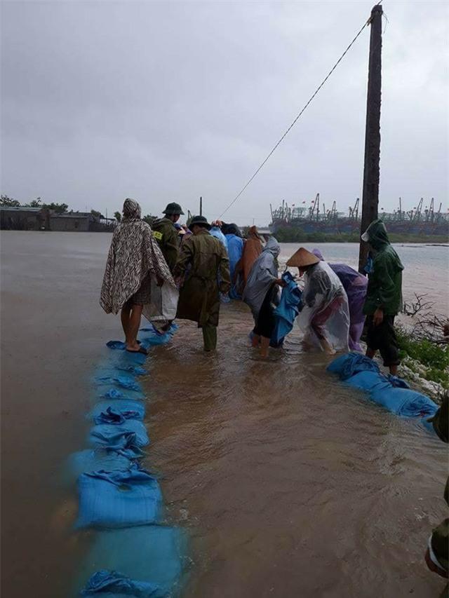 Đội mưa gia cố, giữ đê sông Mai Giang.