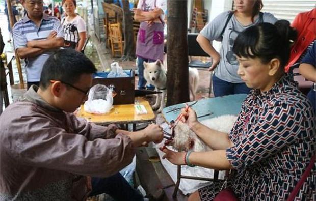 Gây mất trật tự, nhiều chú chó bị bác sĩ làng banh họng và cắt dây thanh quản giữa chợ - Ảnh 3.