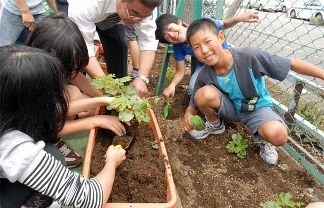 Hóa ra cha mẹ Nhật mang cả âm dương ngũ hành để dạy con. Thảo nào trẻ lại thông minh đến vậy - Ảnh 4.