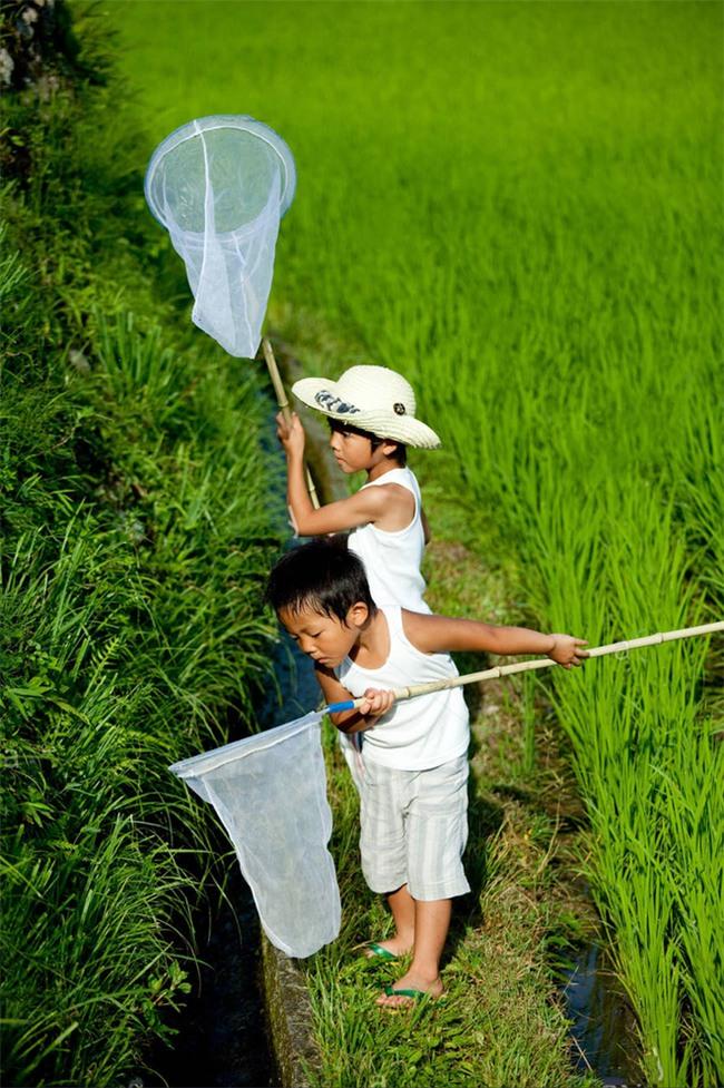 Hóa ra cha mẹ Nhật mang cả âm dương ngũ hành để dạy con. Thảo nào trẻ lại thông minh đến vậy - Ảnh 5.