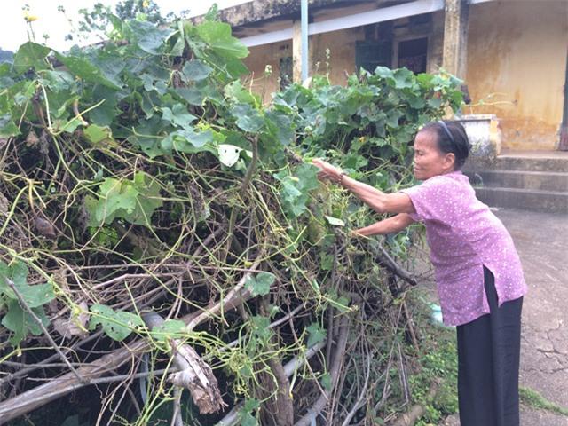 nhung manh doi bat hanh song cho chet tai trai phong bo hoang - 7