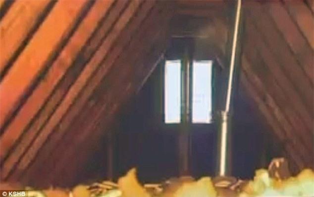 Cảnh sát trèo lên gác mái và nhìn thấy một cảnh tượng kinh hoàng, bí mật của bà mẹ độc ác bị phơi bày - Ảnh 2.