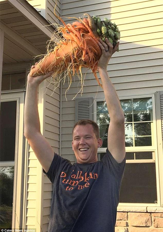 Kinh ngạc củ cà rốt có hình dáng kì dị phá kỷ lục thế giới - Ảnh 2.