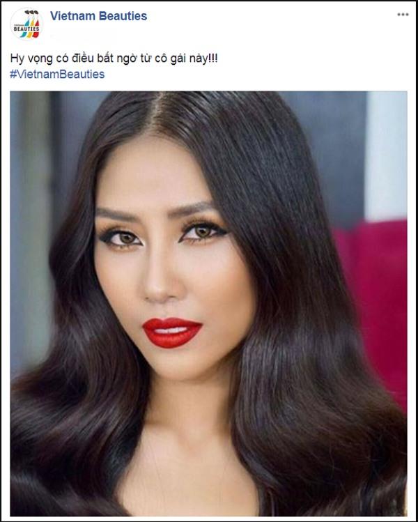 Nguyễn Thị Loan là đại diện chính thức của Việt Nam tại Hoa hậu Hoàn vũ Thế giới 2017?-2
