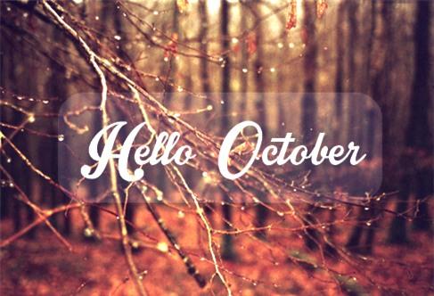 Tháng 10 này con giáp nào có chuyện tình yêu đẹp như tranh như mộng? - Ảnh 1.