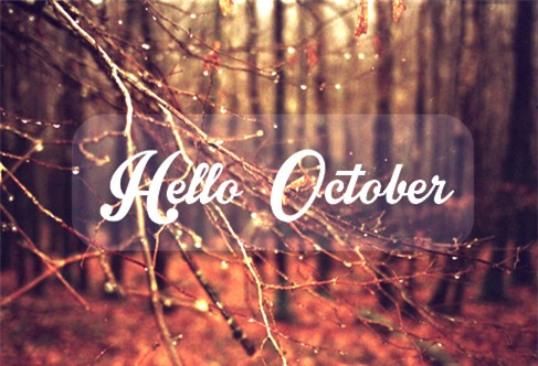 Tháng 10 này con giáp nào có chuyện tình yêu đẹp như tranh như mộng?-1