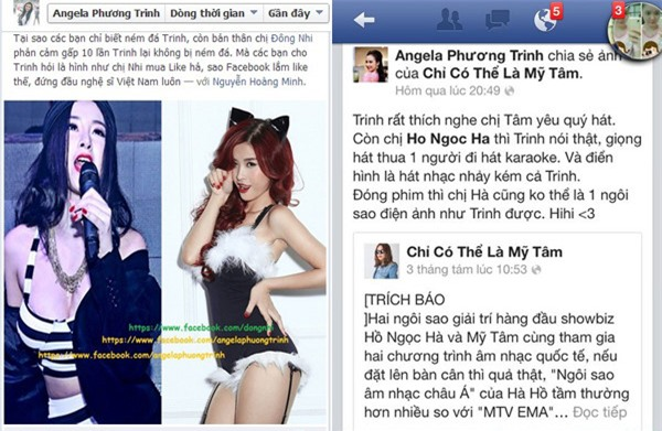 Ngoai Cuong Do la nhieu nghe si cung khon don vi bi lam gia facebook