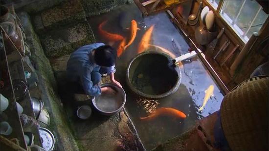 Người Nhật khiến cả thế giới thán phục vì rửa bát, rửa rau ngay ở kênh nuôi cá - Ảnh 3.