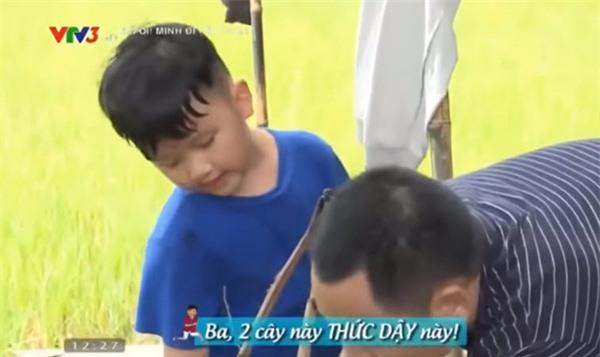 """nhung tinh huong """"hai khong do noi"""" sau 7 tap phat song """"bo oi! minh di dau the?"""" mua 4 - 1"""