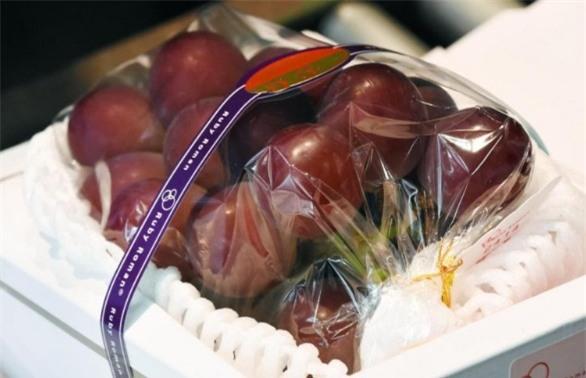 hoa quả nhật bản,hoa quả nhập khẩu,đặc sản nhà giàu