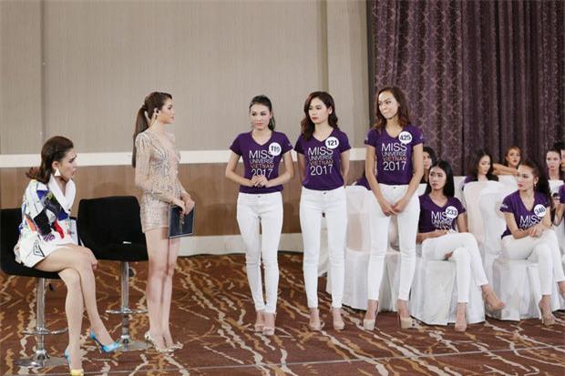 Mai Ngô viết đơn tố cáo BTC Hoa hậu Hoàn vũ VN dàn dựng, gây tổn hại danh dự, sức khỏe - Ảnh 1.