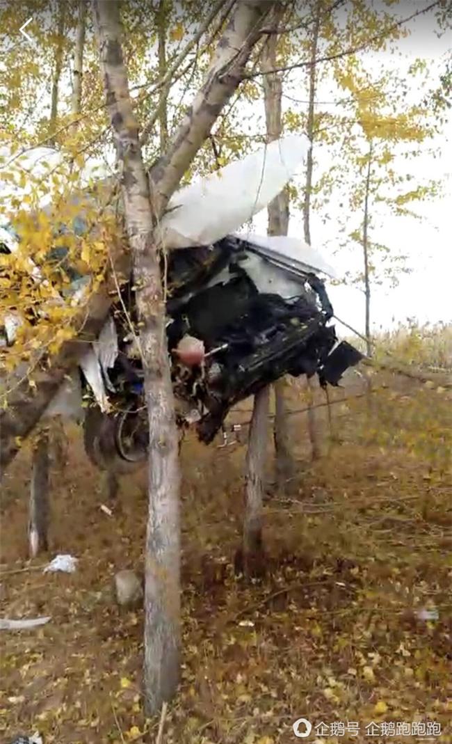 """Tránh đụng độ xe khác, ô tô """"bay"""" thẳng lên hàng cây bên đường rồi mắc kẹt giữa không trung - Ảnh 3."""