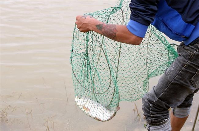Mặc nước ngập trắng, người dân Chương Mỹ vẫn vui vẻ buông cần kiếm bộn cá, nướng nhậu ngay tại trận - Ảnh 11.