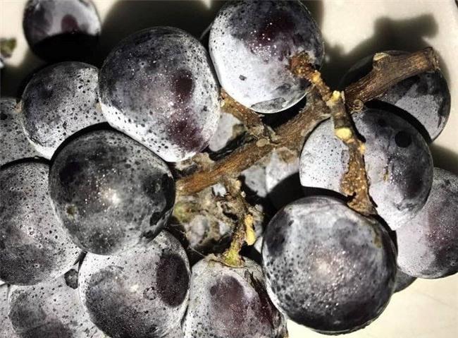 hoa quả nhập khẩu,hoa quả hàn quốc,hoa quả giá rẻ
