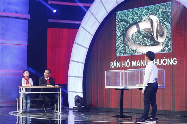 Thánh biết tuốt 6 tuổi vượt mặt MC Lại Văn Sâm trên sân khấu Mặt trời bé con-2