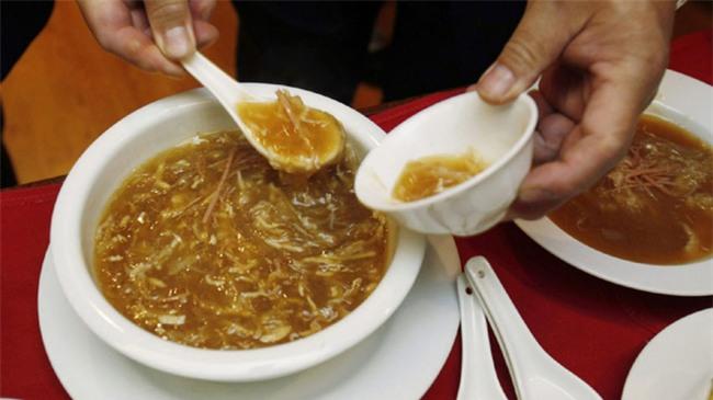 Món súp đắt nhất hành tinh nấu từ tử thần của biển cả, được tôn vinh là một trong tứ đại món ngon Trung Hoa - Ảnh 1.