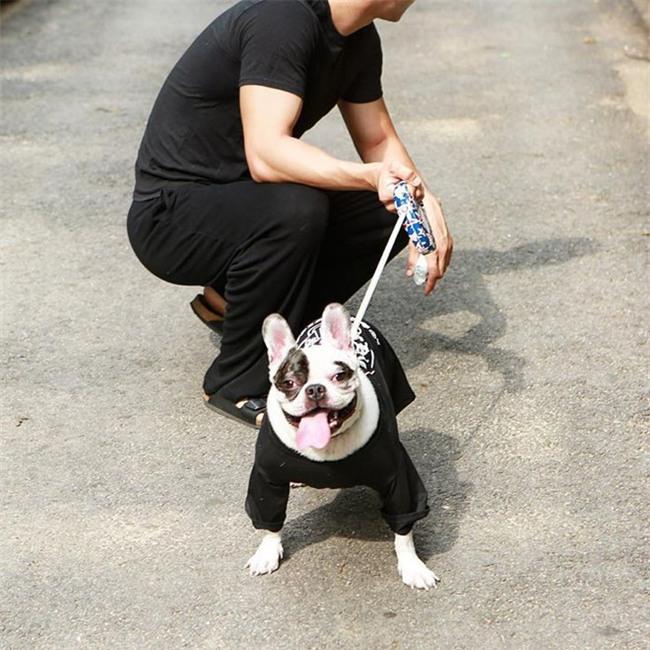 SBS cong bo clip vu cho cua Si Won can chet nguoi: Noi doi va canh bao hinh anh 2