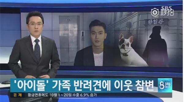 SBS cong bo clip vu cho cua Si Won can chet nguoi: Noi doi va canh bao hinh anh 3