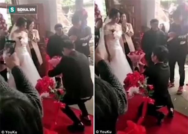 Clip: Quỳ gối cầu hôn, chú rể nhận lại thái độ lạnh lùng của cô dâu ngay tại lễ cưới - Ảnh 1.