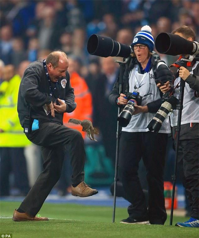 Chú sóc bướng bỉnh gây náo loạn trước trận đấu của Man City - Ảnh 3.
