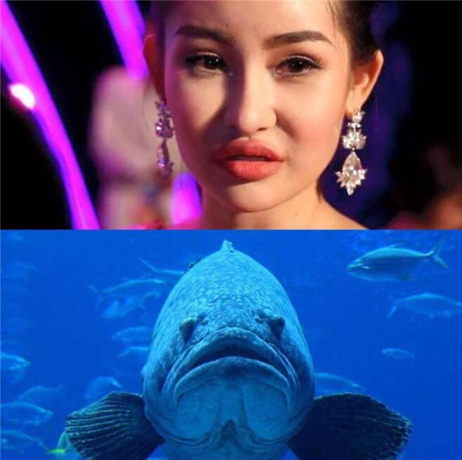 Ca sĩ Thanh Thảo: Dè bỉu nhan sắc Hoa hậu Đại Dương 2017 giống cá La Hán thì thật tội cô ấy-2