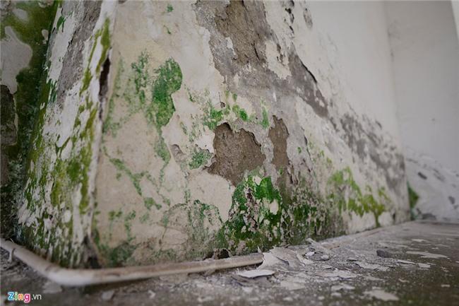 dự án bỏ hoang,nhà tái định cư,nhà ở xã hội