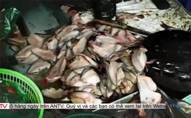 """""""Chợ nào chả có cá chết"""" và sự thật đằng sau những bát bún cá, chả cá thơm lừng mê hoặc"""