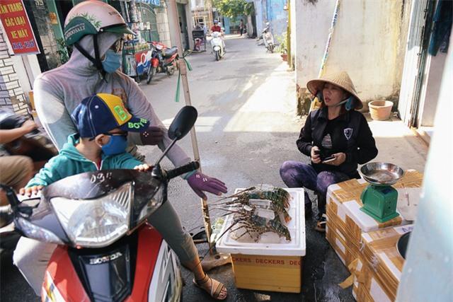 Người dân vùng bão gửi tôm hùm vào Sài Gòn bán tháo kiếm tiền sửa nhà