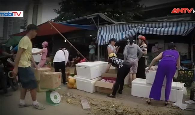 Hé lộ bí mật công nghệ khiến hoa quả nhập từ Trung Quốc về Việt Nam tươi mãi không héo - Ảnh 1.