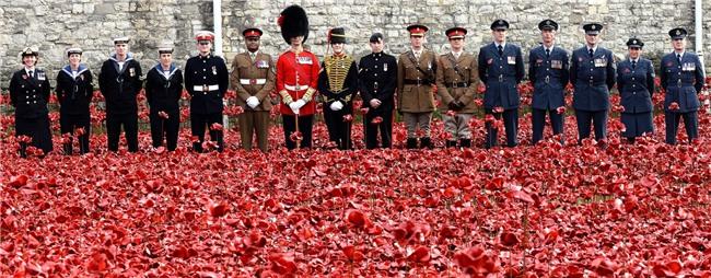 Bạn sẽ shock khi biết bông hoa đỏ cài áo Thủ tướng Justin Trudeau và câu chuyện lịch sử đằng sau - Ảnh 2.