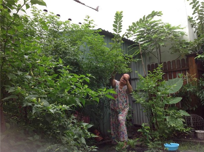 Cuộc sống nông dân giản dị vô cùng viên mãn của bố mẹ đẻ Tăng Thanh Hà-4