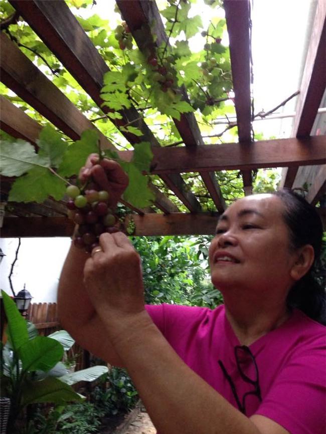 Cuộc sống nông dân giản dị vô cùng viên mãn của bố mẹ đẻ Tăng Thanh Hà-5