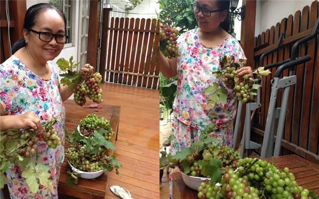 Cuộc sống nông dân giản dị vô cùng viên mãn của bố mẹ đẻ Tăng Thanh Hà-6