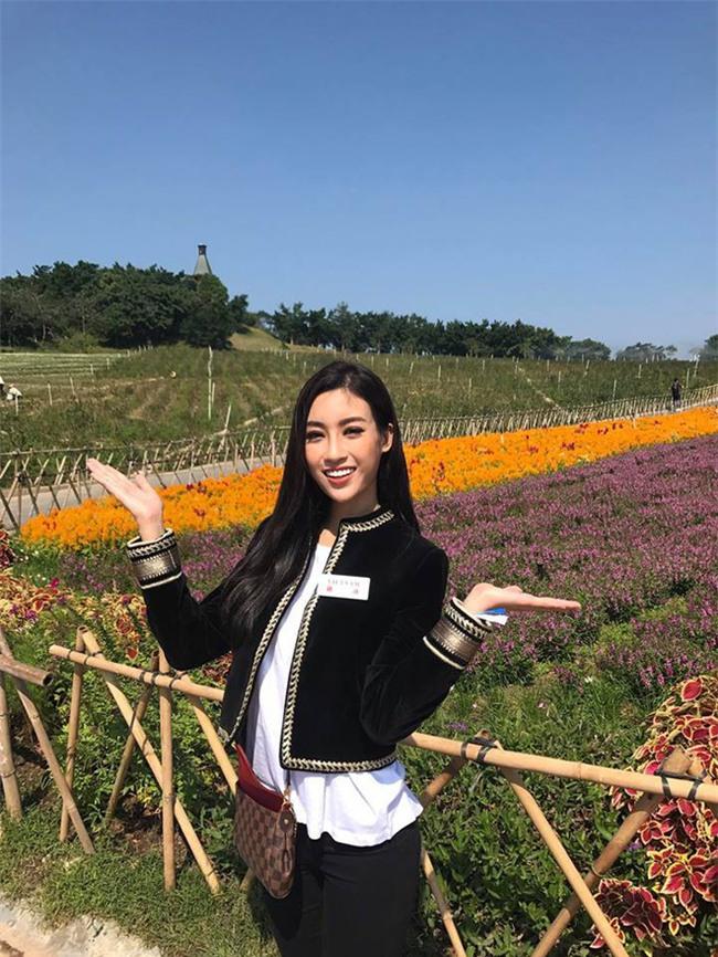 Đỗ Mỹ Linh - Nàng Hoa hậu Nhân Ái luôn ghi điểm trong mắt mọi người với phong cách thời trang giản dị - Ảnh 1.