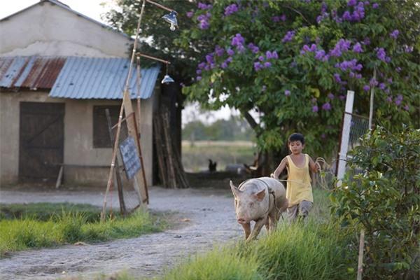 Ông bố nông dân Lương Mạnh Hải la hét hoảng loạn khi bị cua kẹp-4