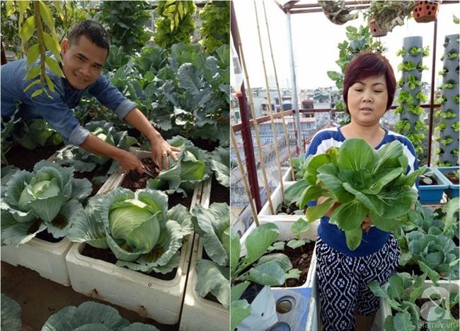 Mê mẩn vườn rau xanh mướt trên sân thượng 40m² với chi phí 7 triệu đồng của người chồng chiều vợ - Ảnh 1.