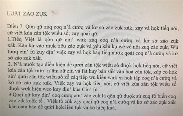 de xuat cai tien tieng viet: dung voi 'nem da', ban nghi nen cai cach khong? - 1