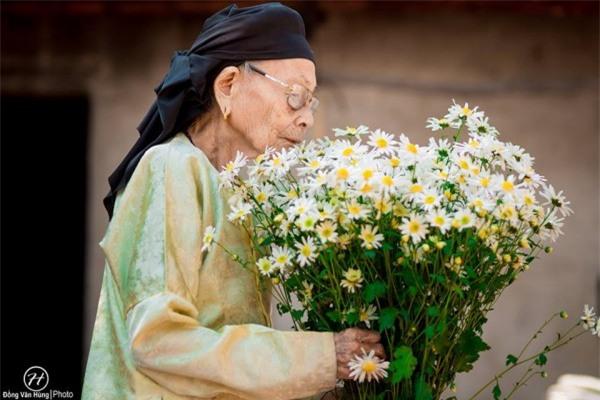 Bộ ảnh cúc họa mi 'phiên bản' bà ngoại khiến người ta phải mỉm cười ngay lập tức! - Ảnh 10.
