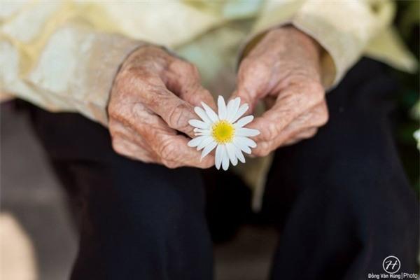 Bộ ảnh cúc họa mi 'phiên bản' bà ngoại khiến người ta phải mỉm cười ngay lập tức! - Ảnh 14.