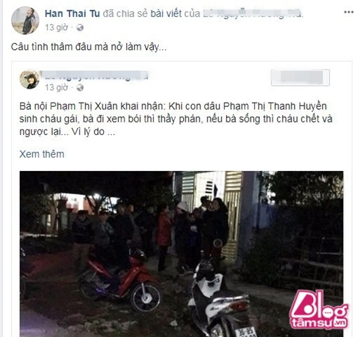 hoaianh (6) (Copy)
