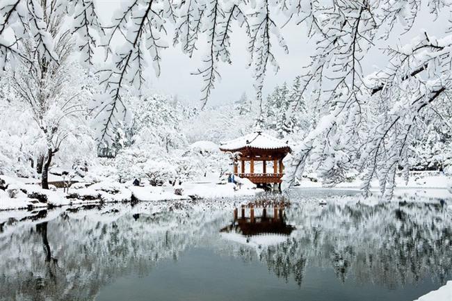 Ngất ngây với những hình ảnh tuyết rơi đẹp lung linh trên khắp thế giới - Ảnh 3.