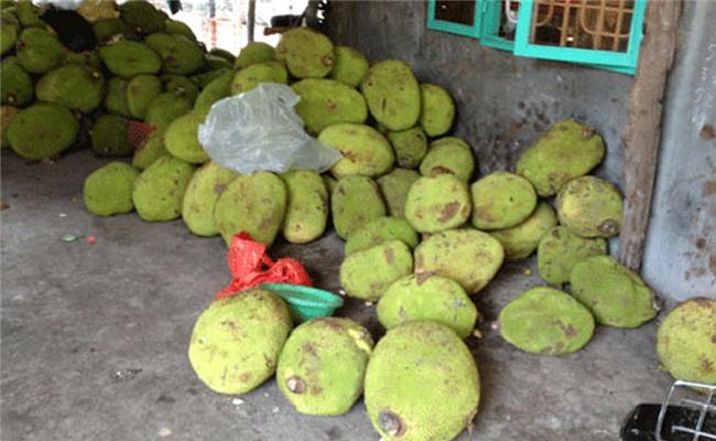 nông sản xuất khẩu,nông sản Việt,mít