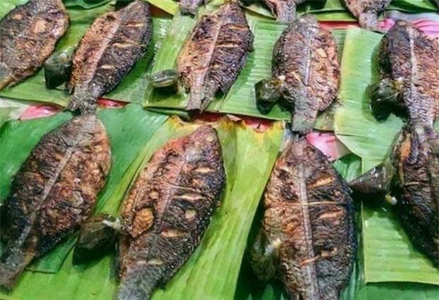 cá nướng tây bắc,đặc sản tây bắc