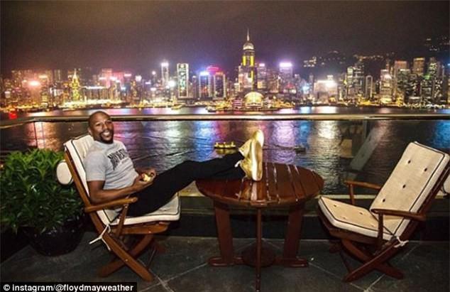 Mayweather trả 330 triệu đồng để nhận nuôi gấu trúc Trung Quốc - Ảnh 4.