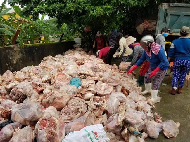 """Đà Nẵng: Kinh hoàng phát hiện 15 tấn phế phẩm động vật bốc mùi hôi thối sắp """"lên bàn nhậu"""" - Ảnh 1."""