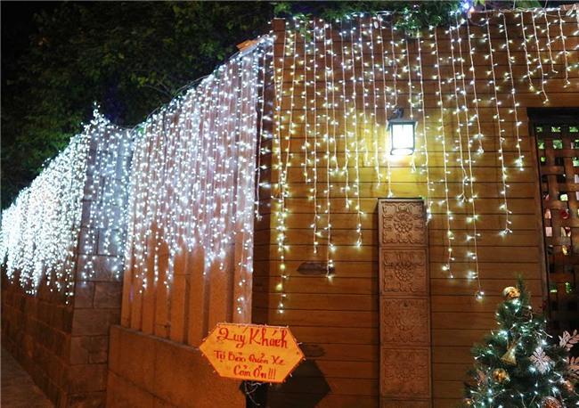 Hàng trăm người chen lấn chụp ảnh Noel tại biệt thự 3 triệu USD của Đàm Vĩnh Hưng - 3