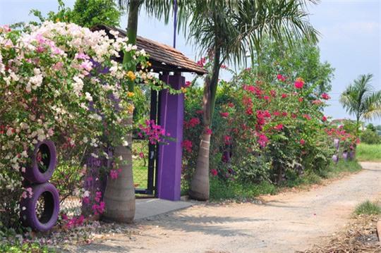Cổng vào căn nhà được trang trí với nhiều loại hoa đủ sắc màu. - Tin sao Viet - Tin tuc sao Viet - Scandal sao Viet - Tin tuc cua Sao - Tin cua Sao