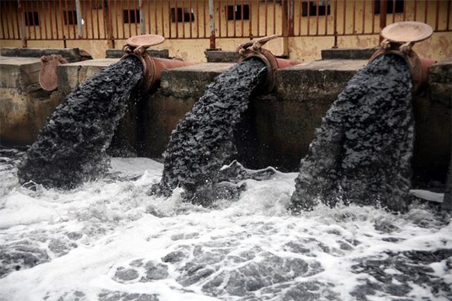 Hà Nội: Nước ô nhiễm nặng, bốc mùi nồng nặc vẫn phải bơm lên tưới cho hoa màu - Ảnh 4.