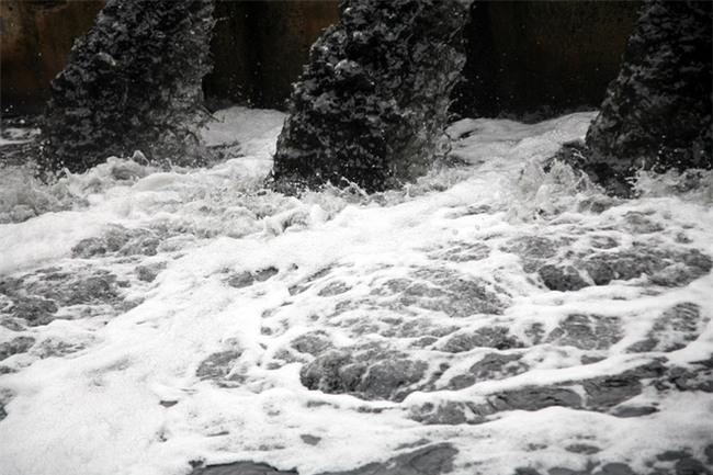 Hà Nội: Nước ô nhiễm nặng, bốc mùi nồng nặc vẫn phải bơm lên tưới cho hoa màu - Ảnh 6.