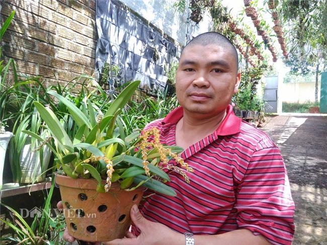 """trai pho nui va hành trình 20 nam choi lan rung theo kieu """"nguoc doi"""" hinh anh 2"""